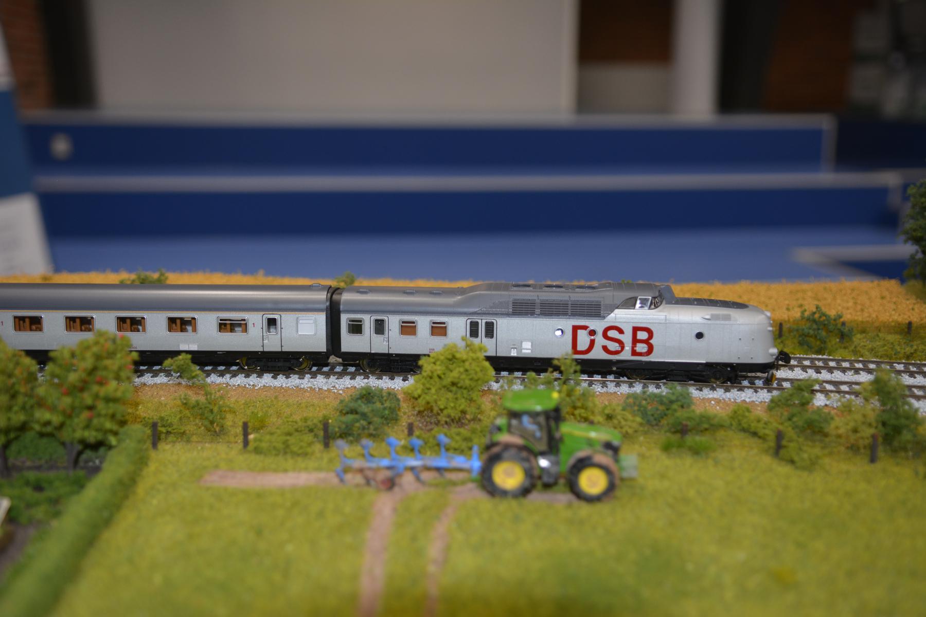 DSC5053