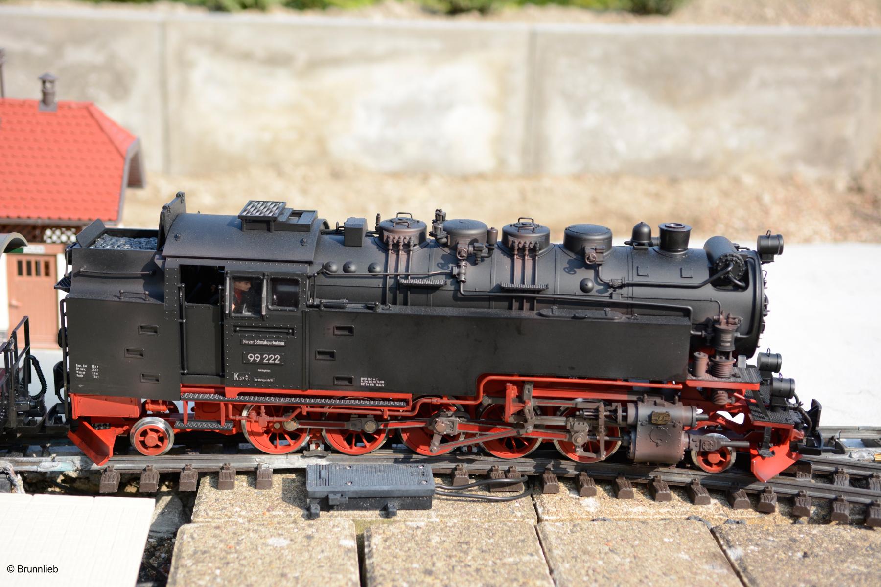 DSC5290